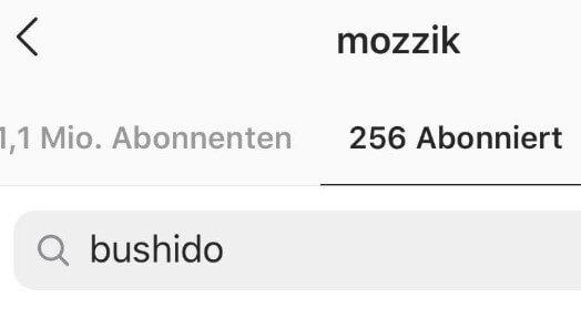Mozzik - Instagram