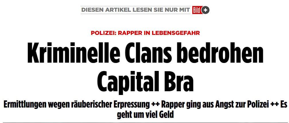 Artikel auf BILD.de
